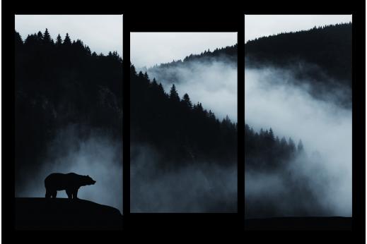 Модульная картина Медведь