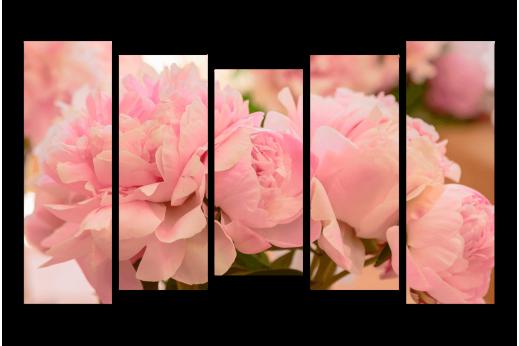 Модульная Нежно-розовые пионы