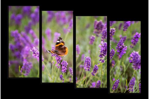 Модульная картина Бабочка на лаванде