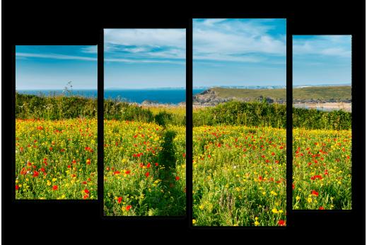Модульная картина Цветочное поле