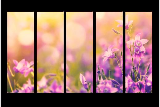 Модульная картина Лавандовые цветы