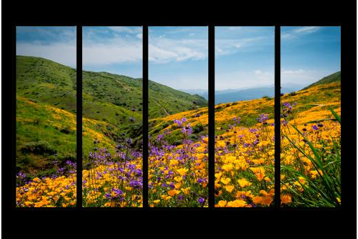 Модульная картина Цветы на склоне горы
