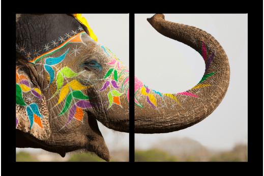 Модульная картина Слон в красках